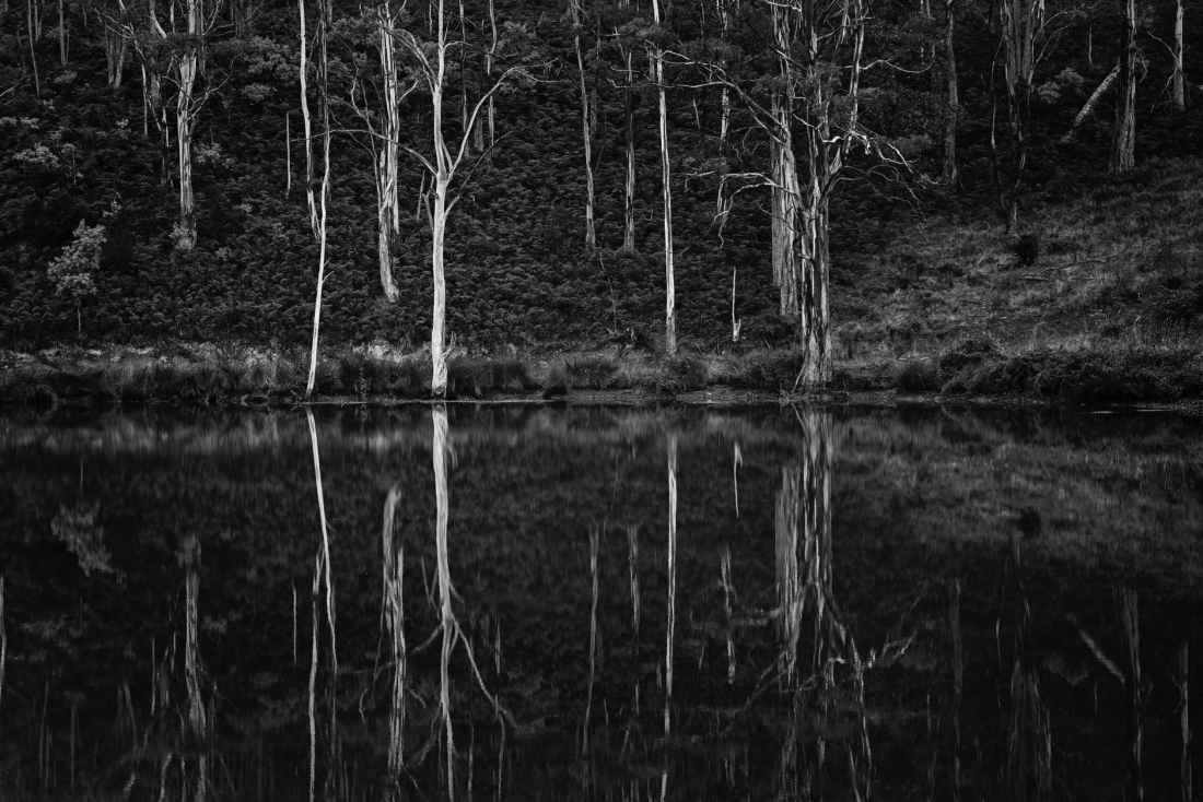 australia black and white cold dark